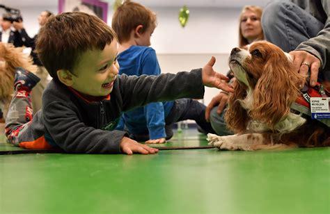 petsmart therapy petsmart charities gives grant to boston children s hospital