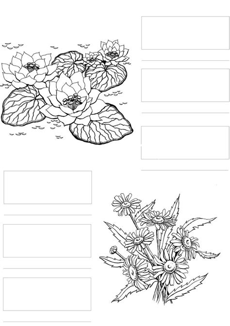 copic markers color chart coloring pages