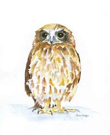 watercolor owl inspiration
