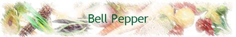 conform möbel bell pepper