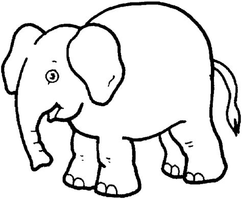 free printable zoo animals coloring pages free zoo animals coloring pages 378 bestofcoloring com