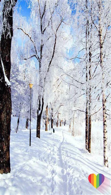 fotos para fondo de pantalla de invierno imagenes para fondo de pantalla del celular de invierno