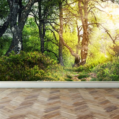 woods wall mural wall mural walk through the woods peel and stick repositionable fabric wallpaper for interior
