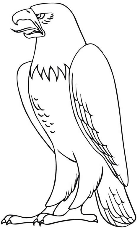 eagle shape templates crafts colouring pages bird