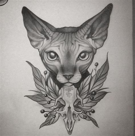 tattoo aftercare going to bed best 25 sphinx tattoo ideas on pinterest sphynx cat