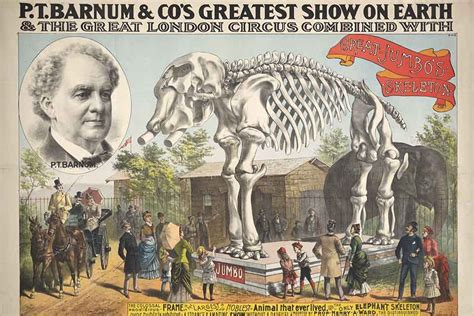 The Of P T Barnum p t barnum the greatest showman on earth historynet