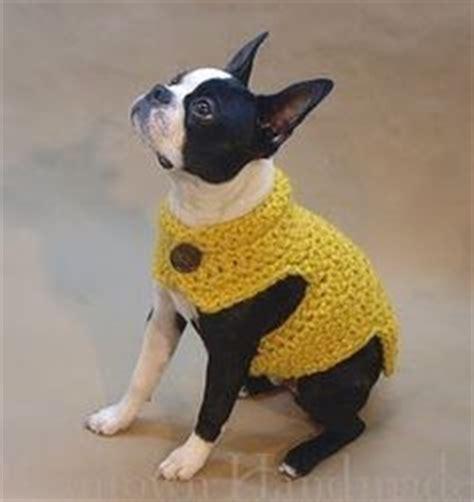 knitting pattern sweater french bulldog french bulldog sweater crochet pattern free crochet patterns