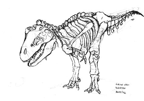 coloring pages of dinosaur fossils 83 dinosaur bones printable coloring pages free