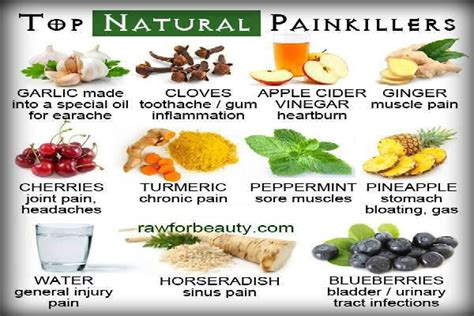 Healing Home Foods by Food Is Medicine 20 Painkillers In Your Kitchen