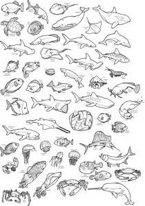 sea animals coloring pages to print deep sea creatures colouring pages