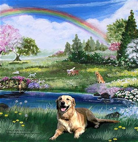 do dogs go to heaven do all dogs really go to heaven for the of his