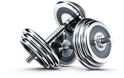 krafttraining zu hause mit hanteln muskelaufbau und krafttraining zu hause krafttraining zu