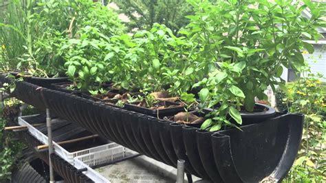 diy hydroponics  homemade plant food   biogarden