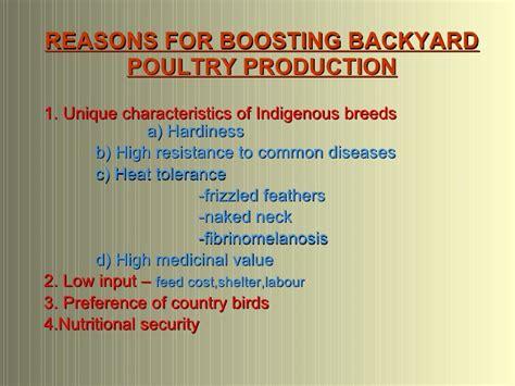 backyard poultry production backyard poultry production in kerala