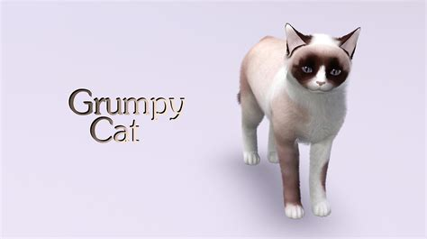 my sims 3 blog new cats by catlover800