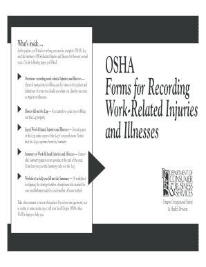 Osha Forms For Recording Work Related Injuries And Illnesses Templates Fillable Printable Osha Silica Exposure Plan Template