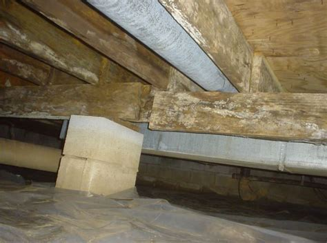 Crawl Space Foundation Support Repair in Seattle, Olympia