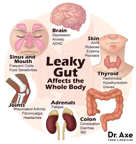 healthy gut healthy life natural medicine mylife