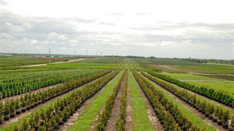 cherry tree farm meet florida s new crop of agricultural environmental leaders growing produce