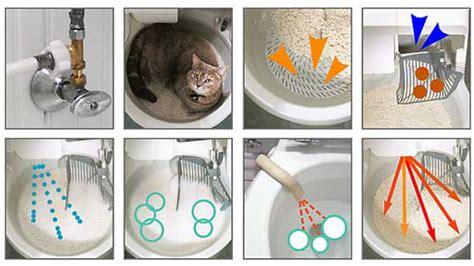 cassetta gatti autopulente 10 rabatt auf die vollautomatische catgenie 120 plus