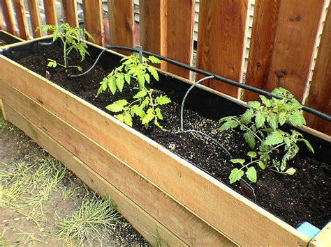 Garden Irrigation Ideas 25 Best Ideas About Irrigation On Irrigation Hose Garden Irrigation System And