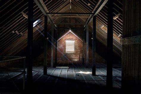 attic pictures pumpkinrot com what s brewing attics