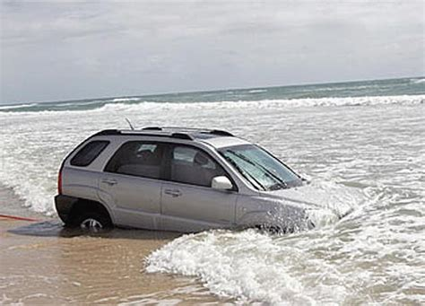 beached sportage funny bizarre amazing pictures