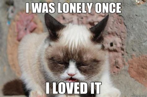 Lonely Meme - lonely cat memes image memes at relatably com