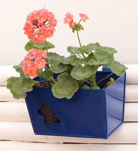 Butterfly Planter by Quot Railing Rectangular Planter Small With Butterfly Cut