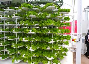 Vertical Trellis System Hydroponics Inhabitat Sustainable Design Innovation