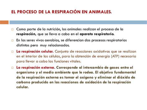 la respiracin el 8487403840 el aparato respiratorio y el excretor en animales