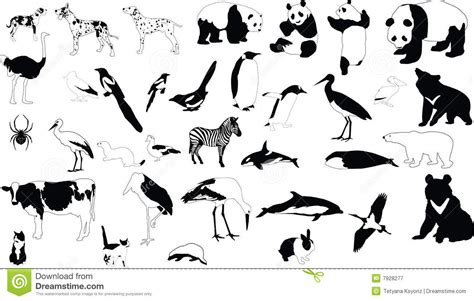 black and white animals stock vector image of tattoo