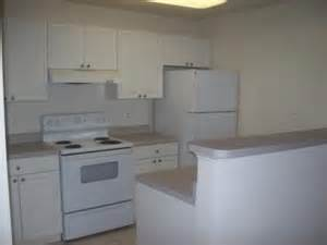 White Kitchen Cabinets With White Appliances White Cabinets White Appliances