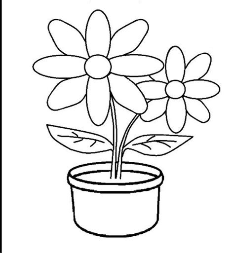 gambar bunga matahari  mewarnai anak tk