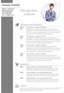 Cv In Commercial Exemple De Cv Commercial Vendeur Gratuit 224 T 233 L 233 Charger