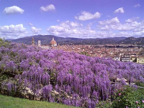 firenze giardino bardini bardini villa and garden visit tuscany