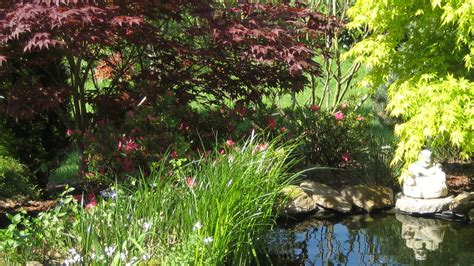cr 233 ation massifs de jardin paysagiste vannes