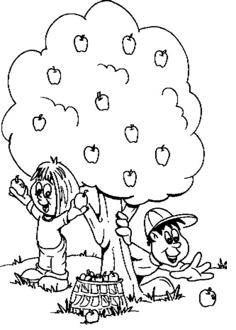 apple harvest coloring pages tree coloring pages the child harvest apple coloring