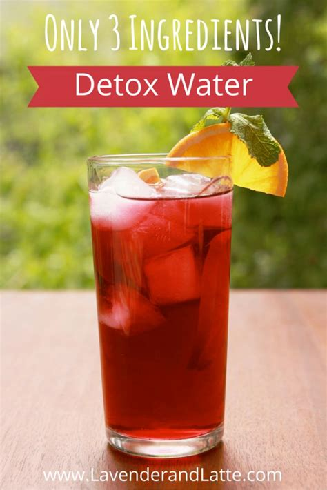 Cranberry Detox Water by Best Ideas About Essential Living Oils Essential And