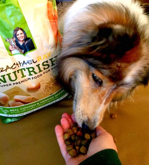 North Shore Animal League Sweepstakes - help rachael ray nutrish 174 donate 250 000 to benefit shelter pets you could win a