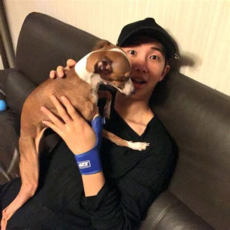 kim namjoon dog 87 best bts pets images on pinterest bts bangtan boy