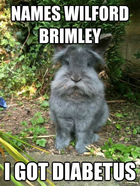Wilford Brimley Diabeetus Meme - names wilford brimley i got diabetus rabbit diabetus quickmeme