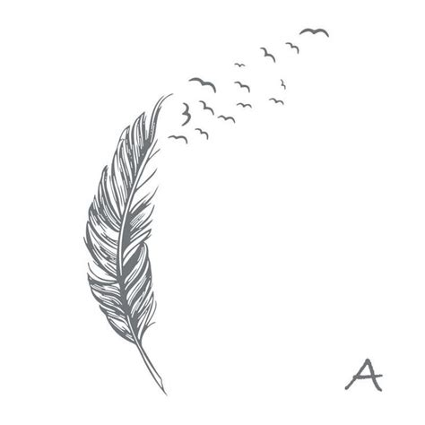 pattern name and classification best 25 feather tattoo design ideas on pinterest
