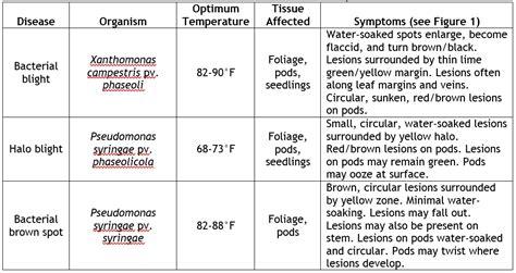 list of plant diseases caused by bacteria bacterial diseases in snap beans weekly crop update