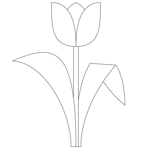 tulip template free printable tulip coloring pages for
