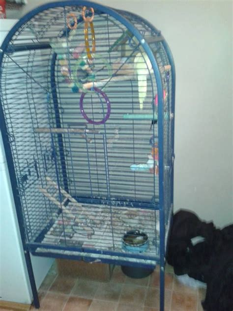 cage for sale cockatiel cages for sale images