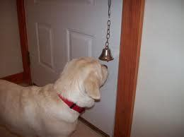 house training bells for dogs house training archives how to train your dog yourself
