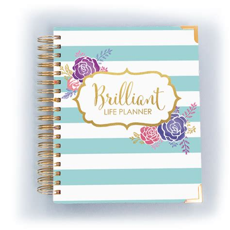 the brilliant content planner organize your brilliance books brilliant planner