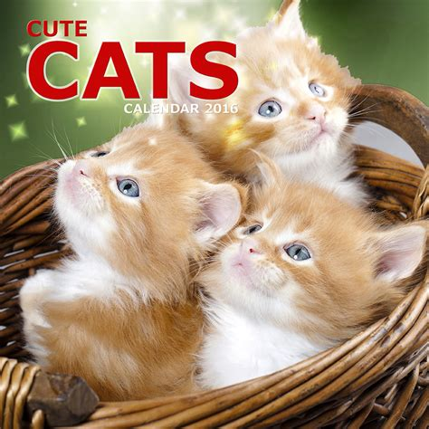 Cat Calendar 2018 Uk Cats Calendars 2018 On Europosters