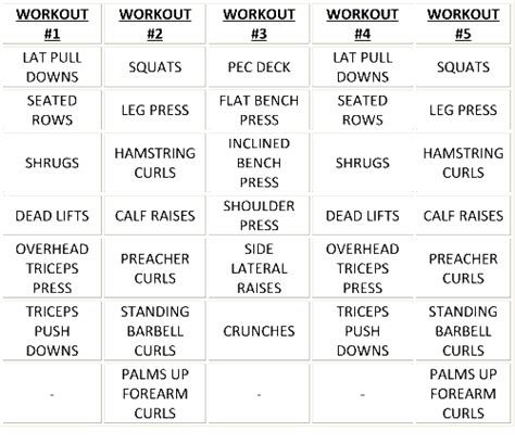 bodybuilding workout schedule circuit